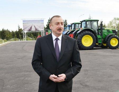 İlham Əliyev pambıq tarlasında — FOTOLAR