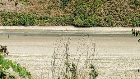İsmayıllıda aşıqbayram gölünə yenidən su buraxıldı! Kifayət qədər qanunsuzluqlar barədə məlumat daxil olub - Foto+Video